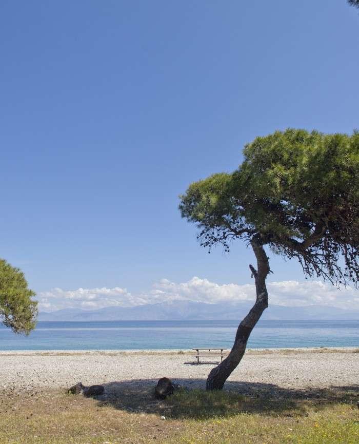 Lido Hotel Xylokastro Greece Pine Forest Beach Pefkias