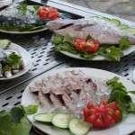 fresh fish hotel restaurant greece
