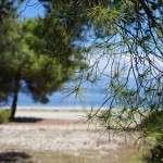 pine park xylokastro near lido hotel